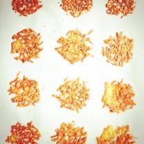 manchego koekjes - tinto